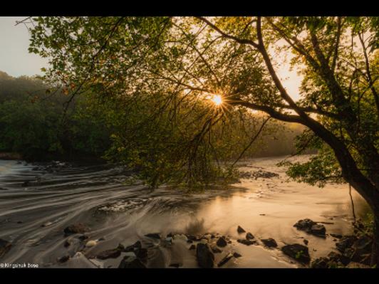 Nature Photo Print