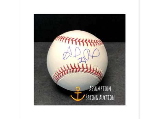 Boston Red Sox Autographed Ball