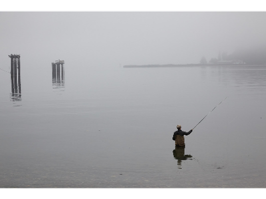 'Fishing on a foggy morning' by Alisa Steck