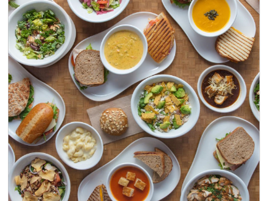 Panera Bread's Lunch for a Year