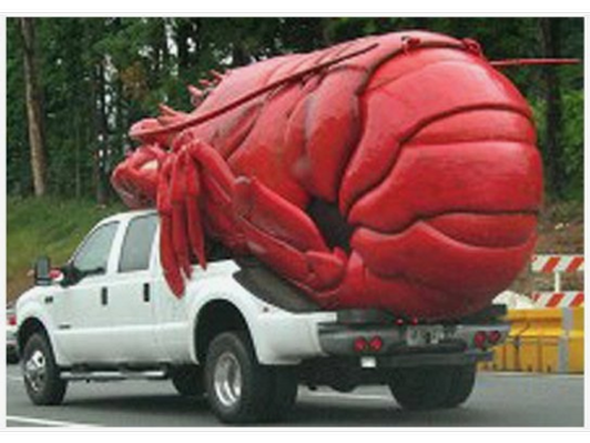 Lobsters to Go