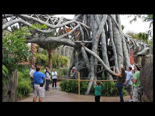Jacksonville Zoo Family 4 Pack
