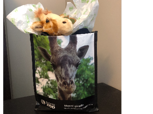 Giraffe Prize Pack from the Toronto Zoo