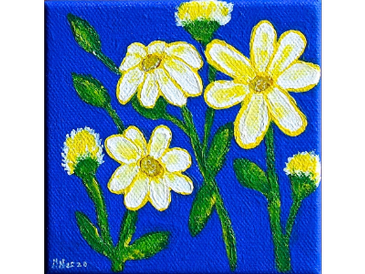 Daisies of the Summer