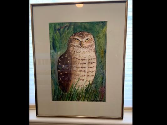 Burrowing Owl by Les Borodinsky