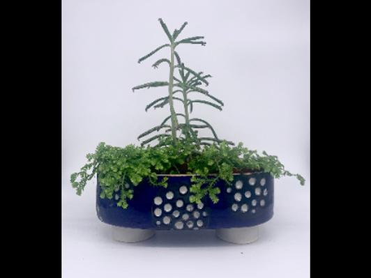 Blue & Black & White & Gold Oval Planter by Katie Parker