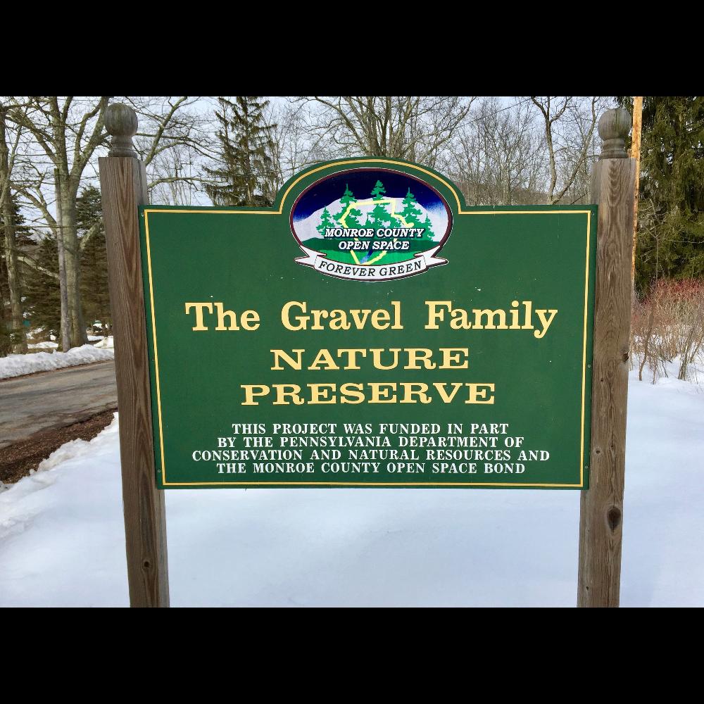 Guided Nature Walk in Barrett Township