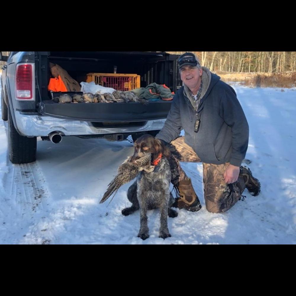 Pheasant Hunt with Moose!