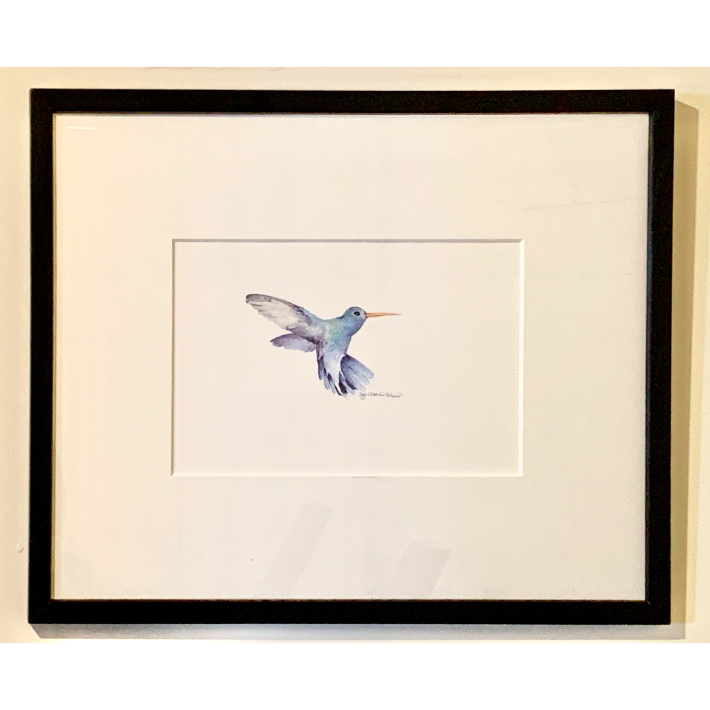 Raón Raón (Hummingbird) - Framed Watercolor