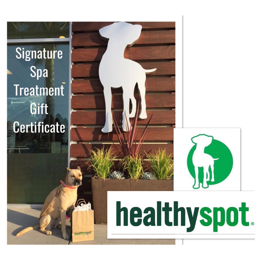 Signature Spa Treatment Gift Certificate