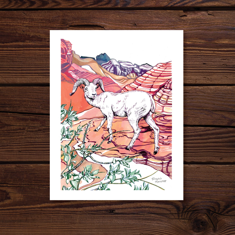 Bighorn Sheep Print and Waterproof Lizard & Yucca Sticker