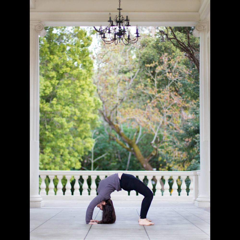 1 Private Yoga Session