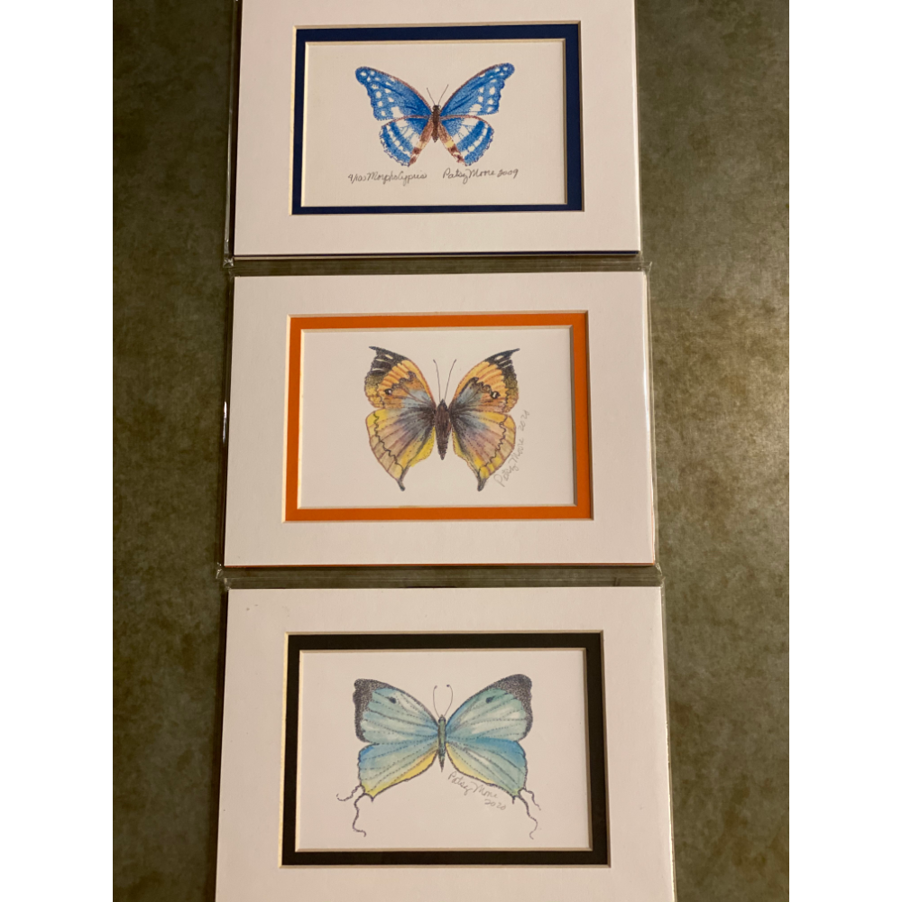 3 Beautiful Signed Butterfly Prints
