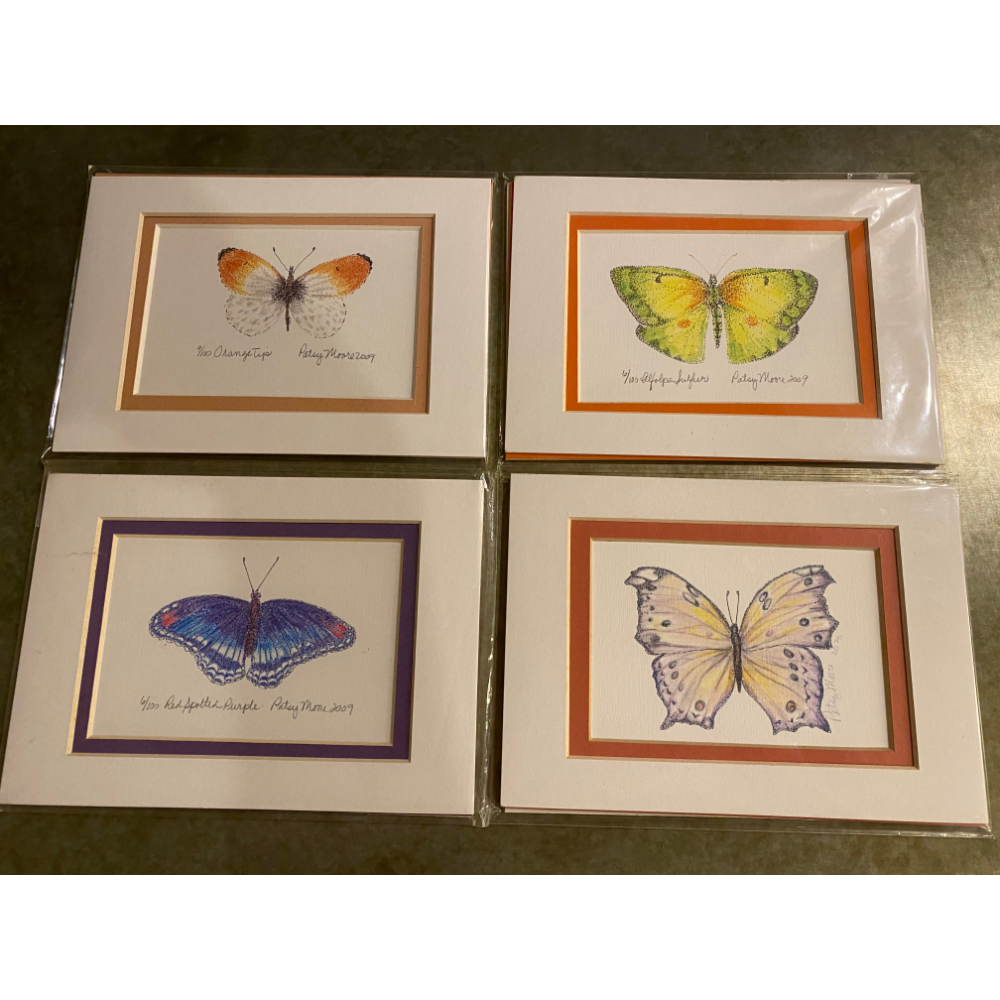 4 Beautiful Signed Butterfly Prints