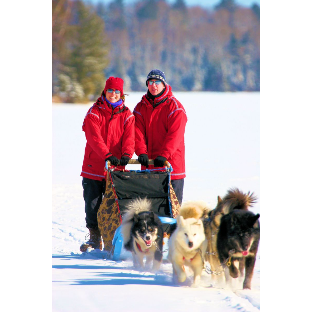 Wintergreen Dog Sled Outing