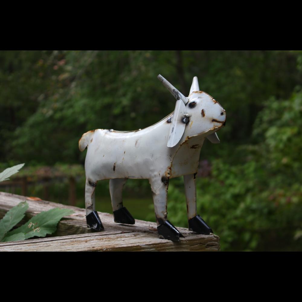 Scrappy Metal Goat