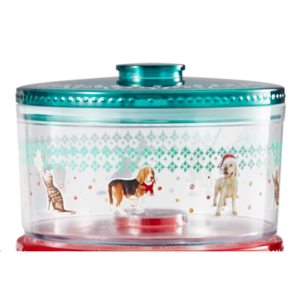 Pioneer Woman Treat or Cookie Container