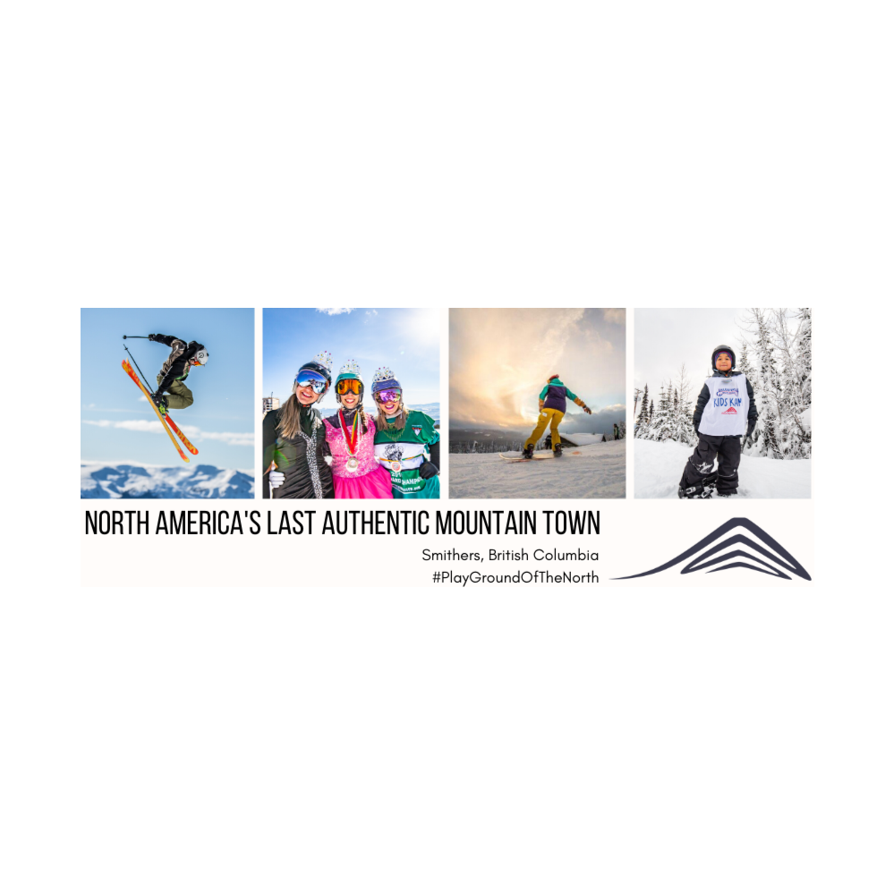 Corporate Book - 12 Adult Lift Passes