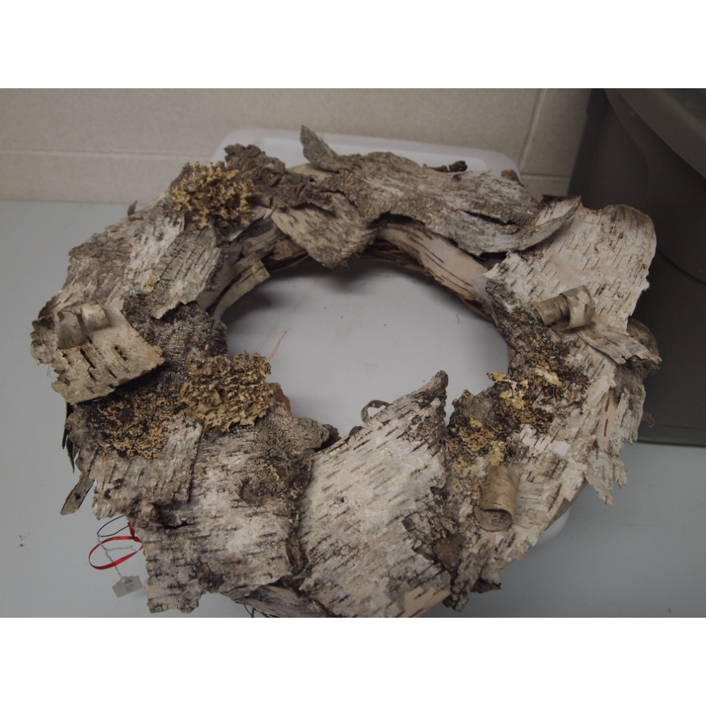 Birch Tree Wreath