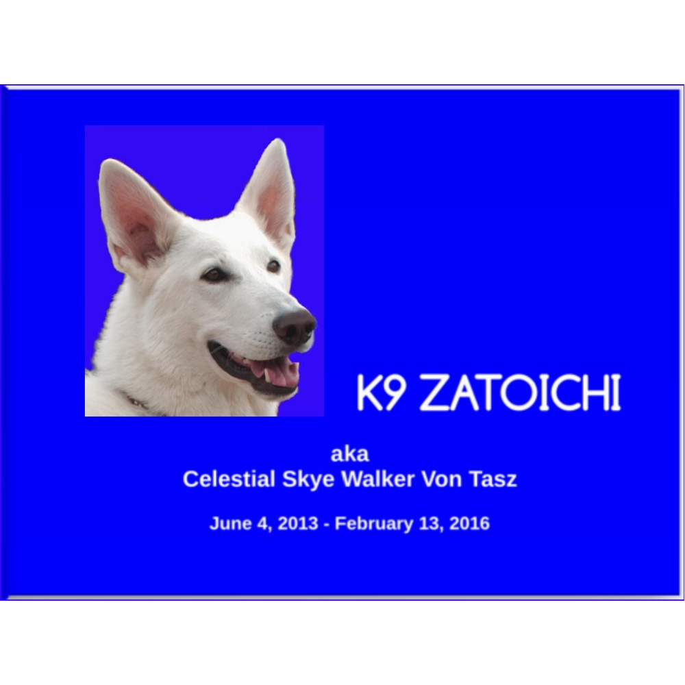 Zatoichi Search dog book
