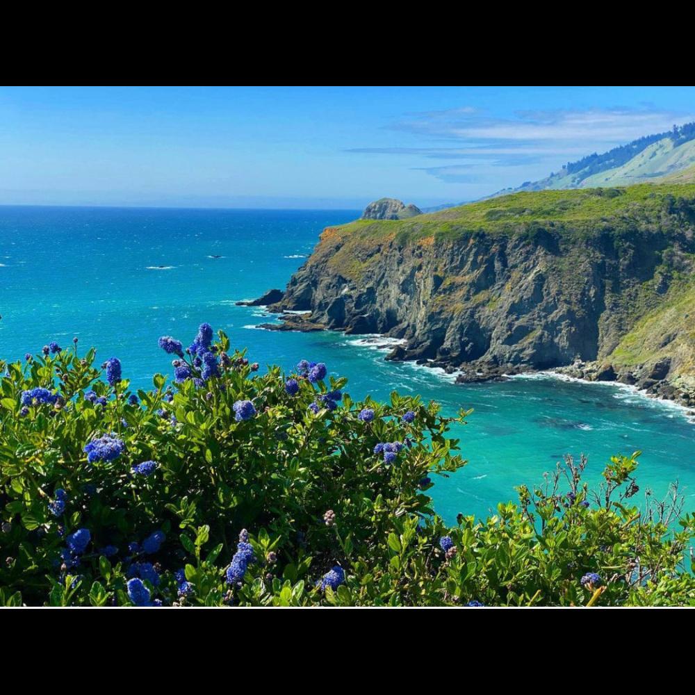 Sonoma County Coastal Photography