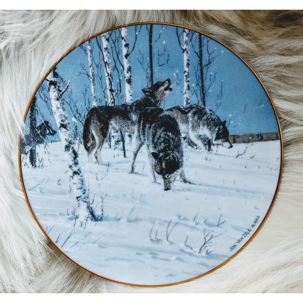 Arctic Majesty - Picking Up The Trail (1)