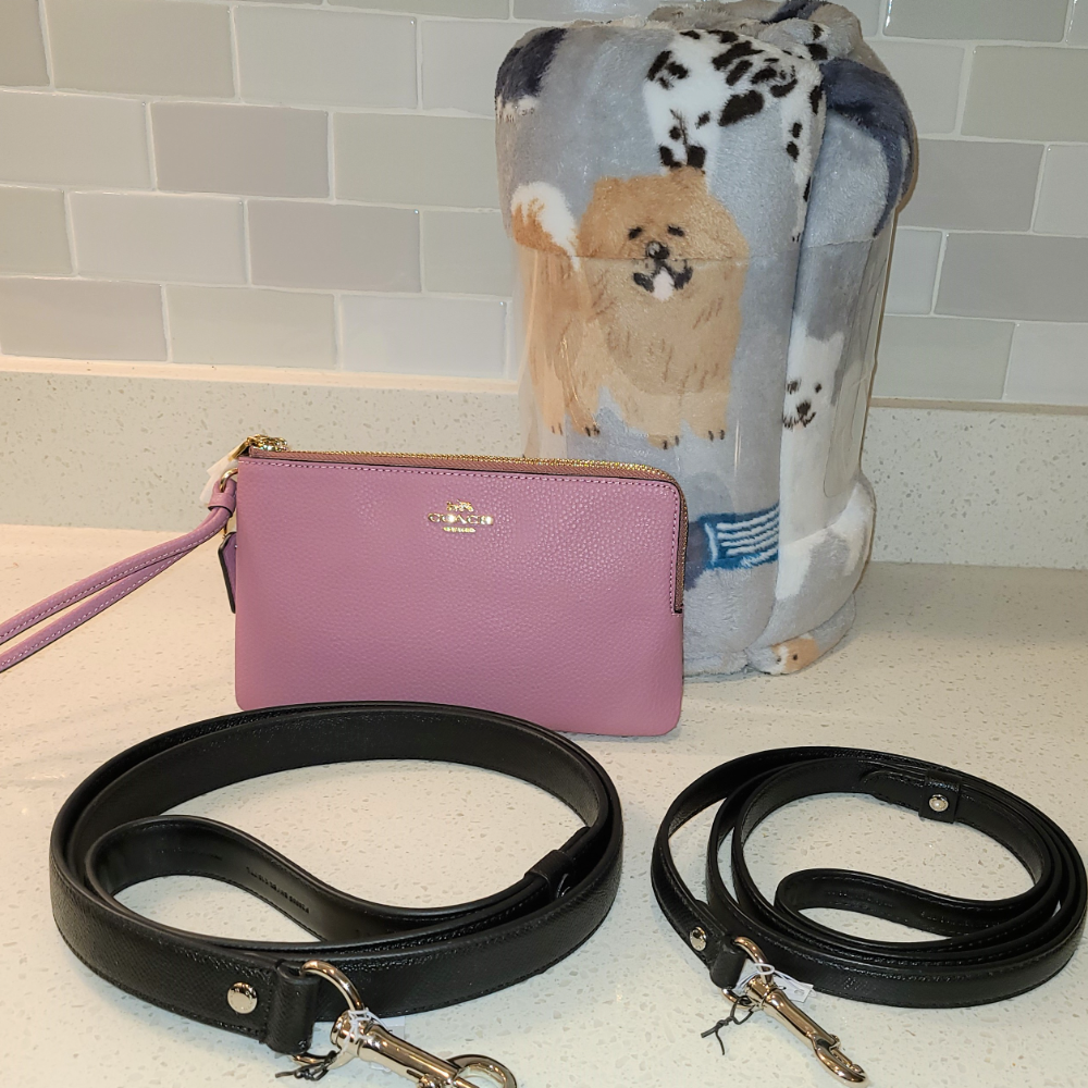 Coach Dog Travelling Set