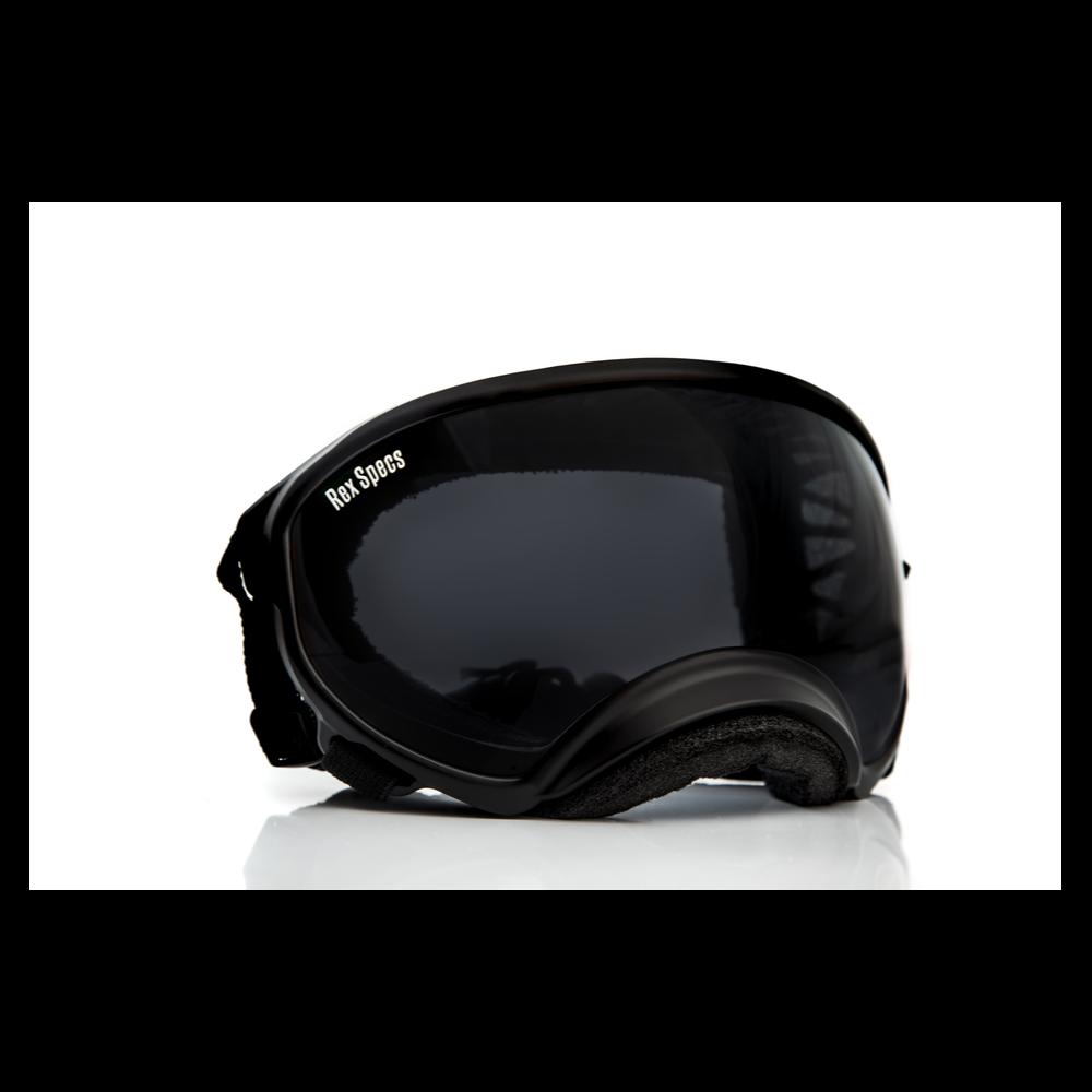 Rex Specs - Black - Large