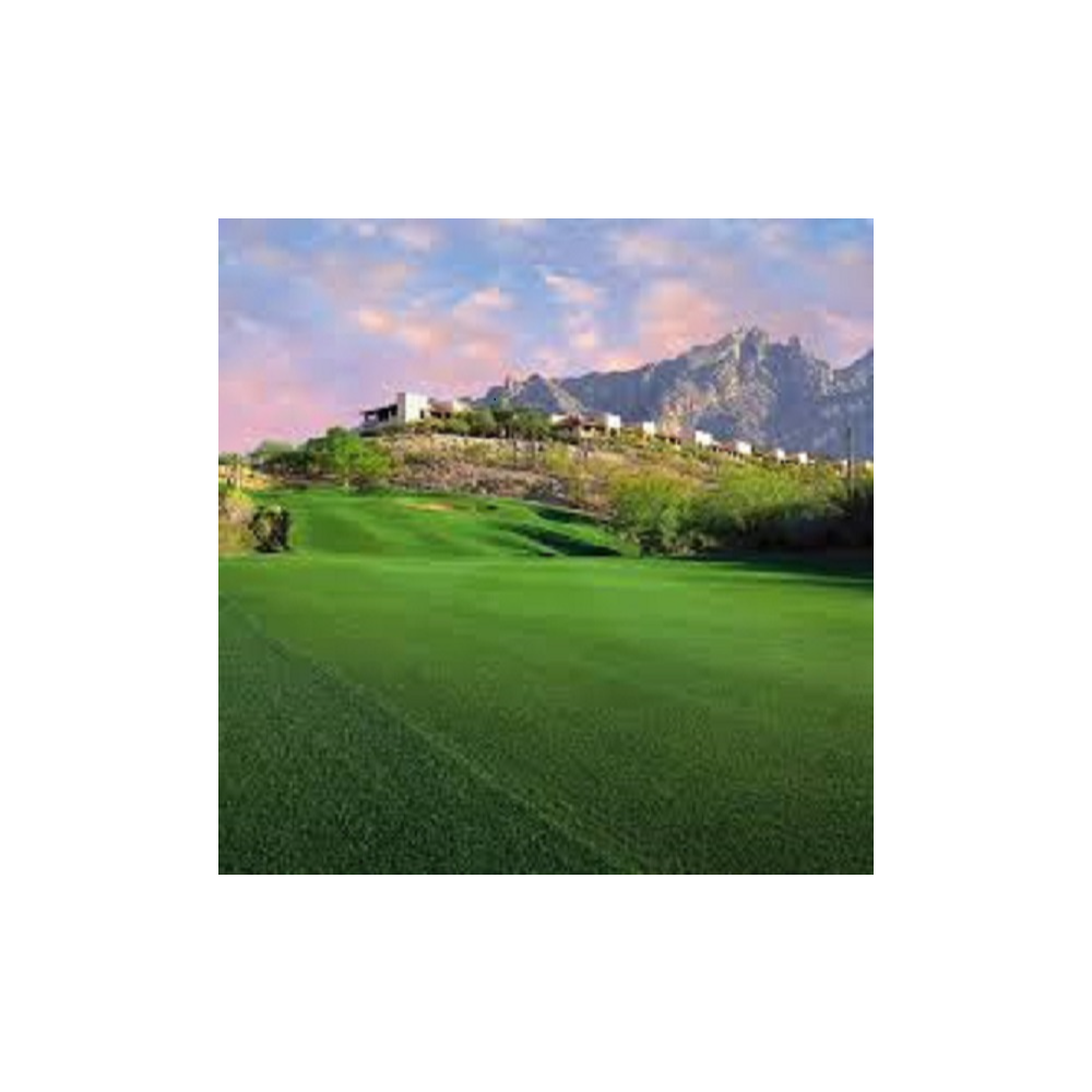 La Paloma Country Club Golf for 4