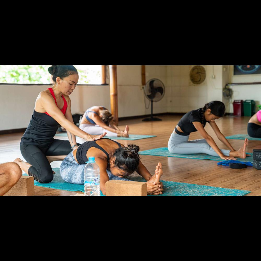 Serenity Eco Guesthouse and Yoga (Canggu, Bali)