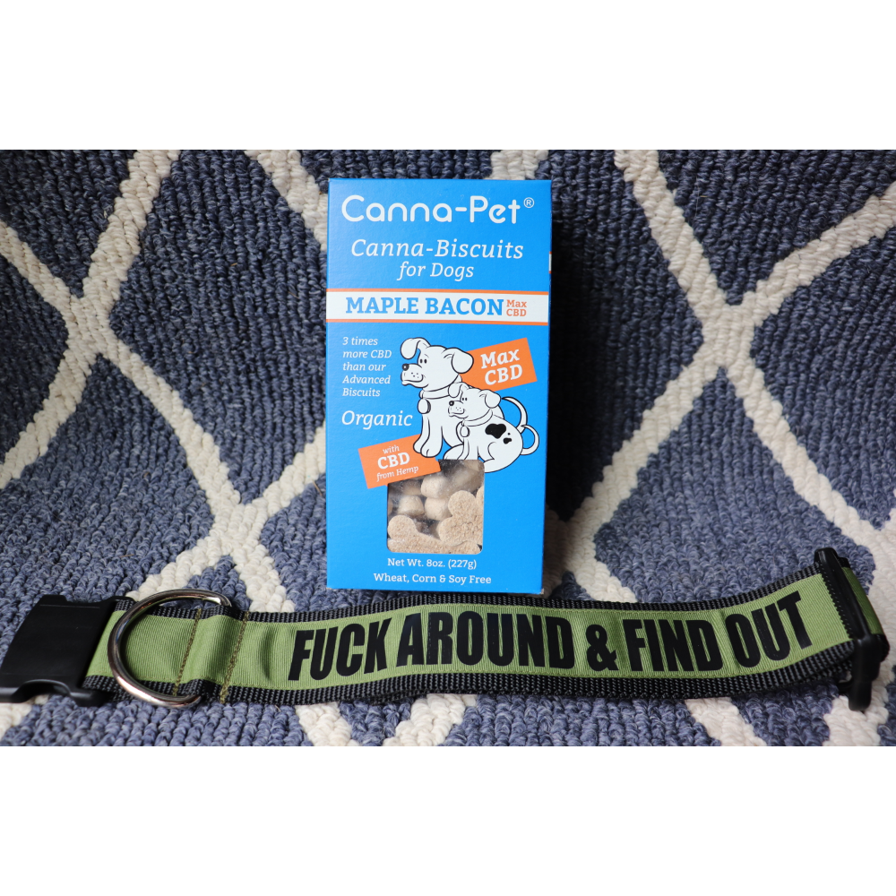 "2"" Fuck Around & Find Out Collar/ Cannapet Biscuits"