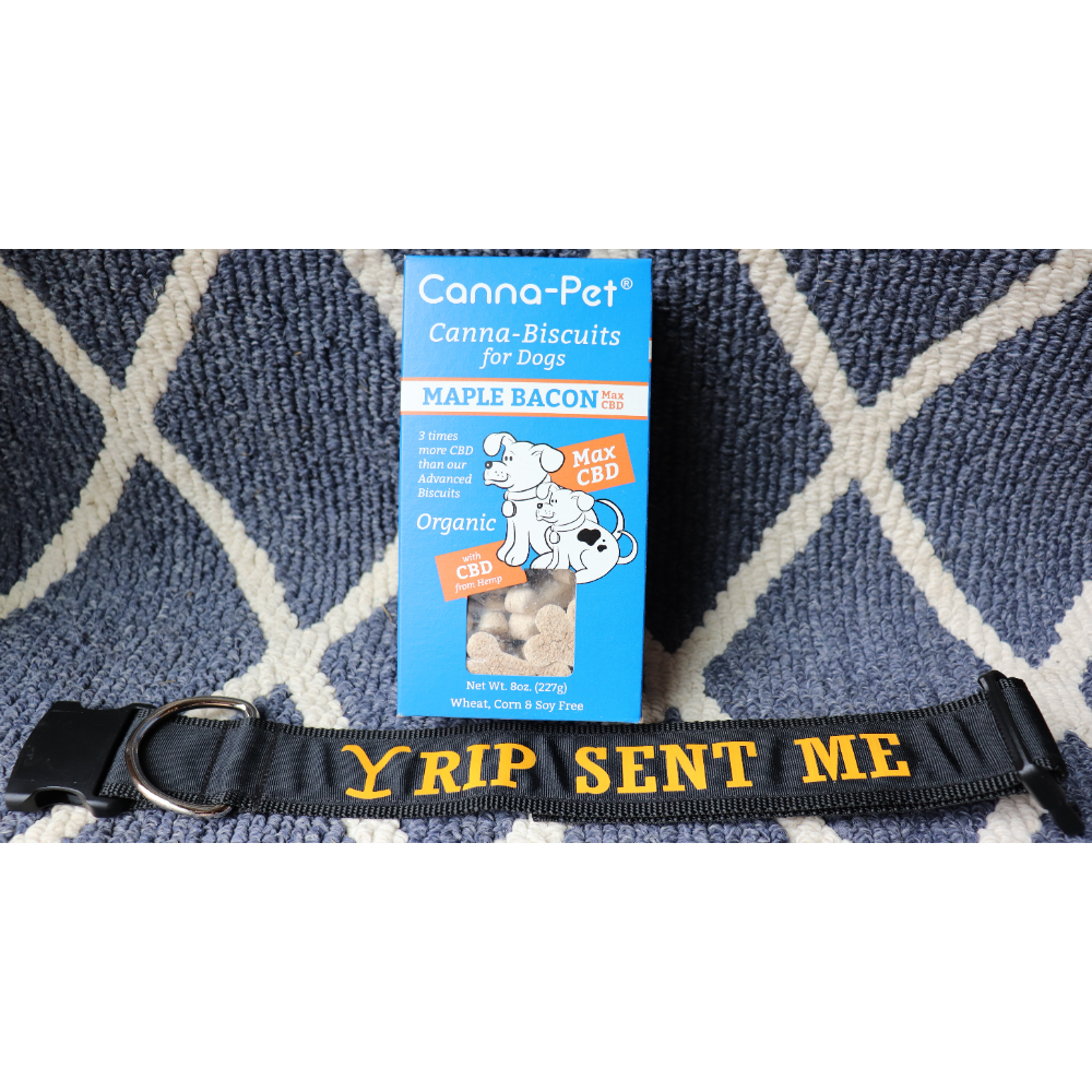 """2"""" Yellowstone Collar/ Cannapet Biscuits"""