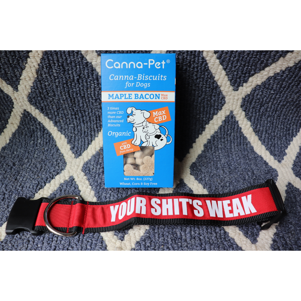 """2"""" Your Shit's Weak Collar/ Cannapet Biscuits"""