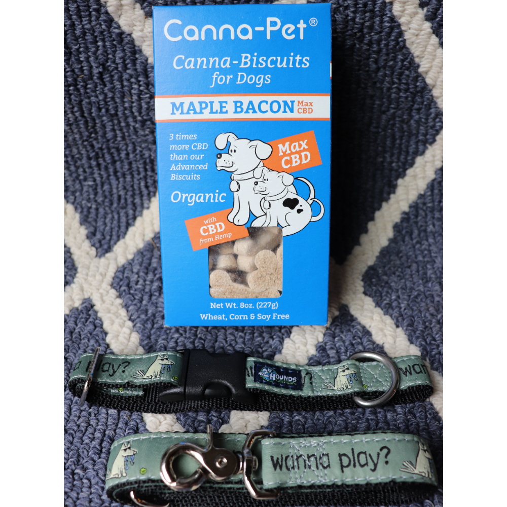 2Hounds Matching Collar&Leash/Cannapet Biscuits