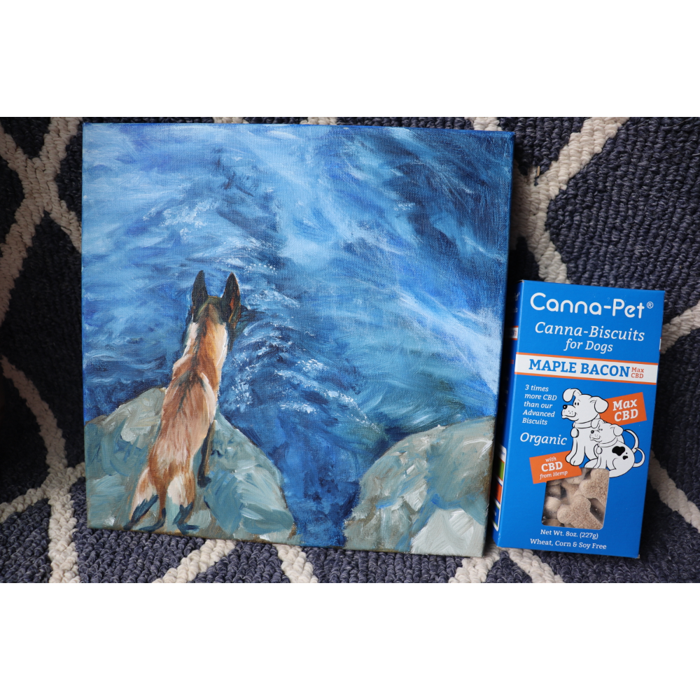 Malinois Canvas Painting/Cannapet Biscuits