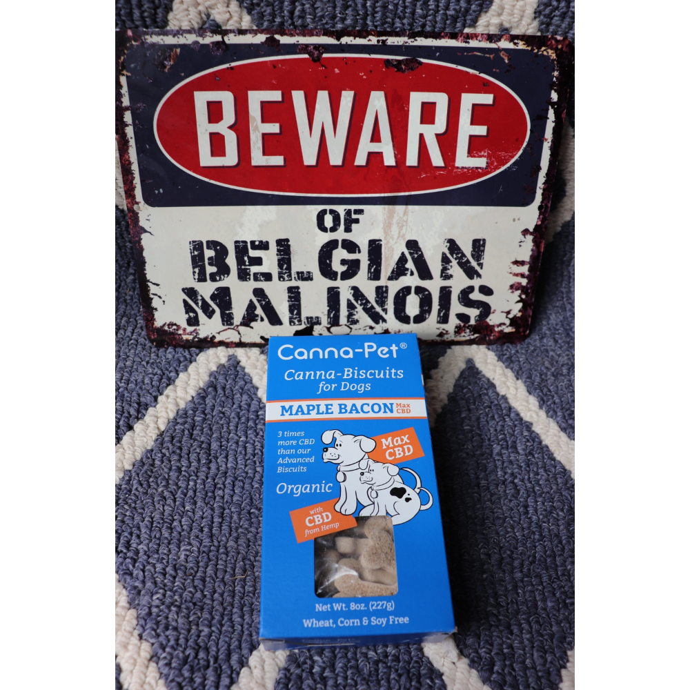 Beware of Belgian Malinois metal sign/Cannapet Biscuits