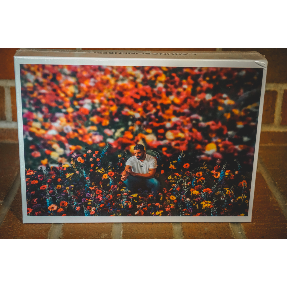 Golden Afternoon (Drake) Puzzle - Limited Edition signed by Caitlin Cronenberg