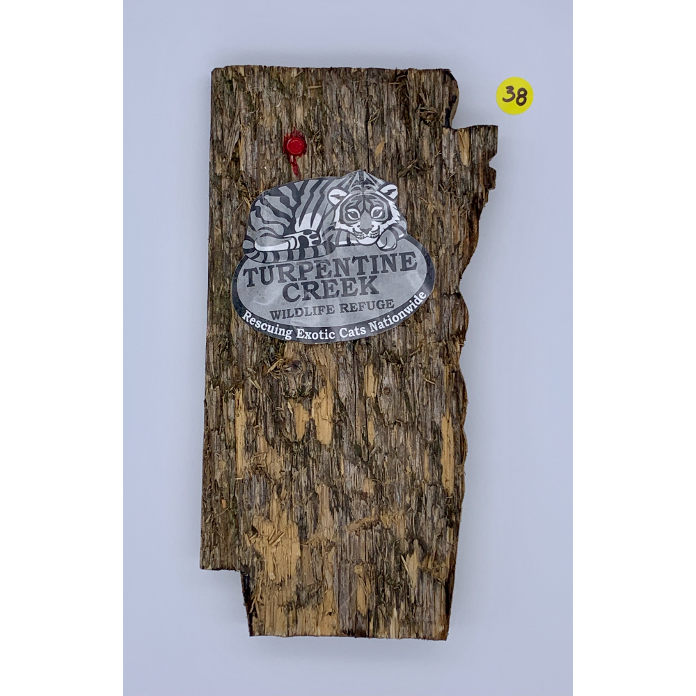"""10 1/2"""" x 5"""" TCWR Wall hanger made from a bench destroyed by Donner and Roman"""