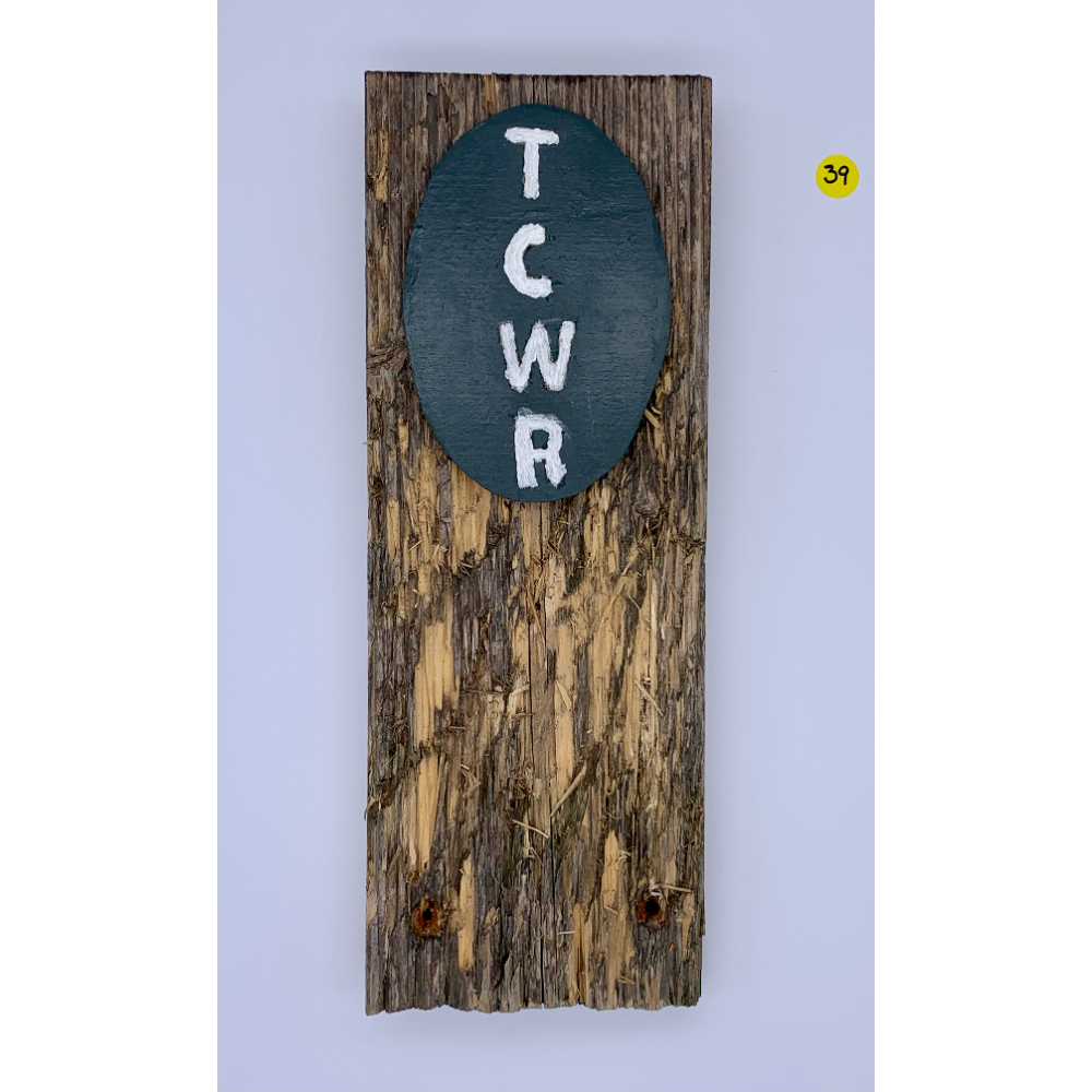 """14 1/2"""" x 5"""" TCWR Wall hanger made from a bench destroyed by Donner and Roman"""