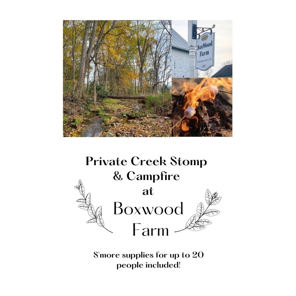 Creek stomp and campfire at Boxwood Farm