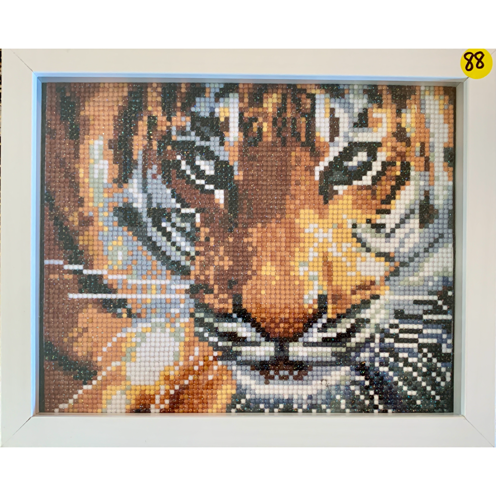 "9"" x 11"" inch Framed Diamond Tiger Painting"