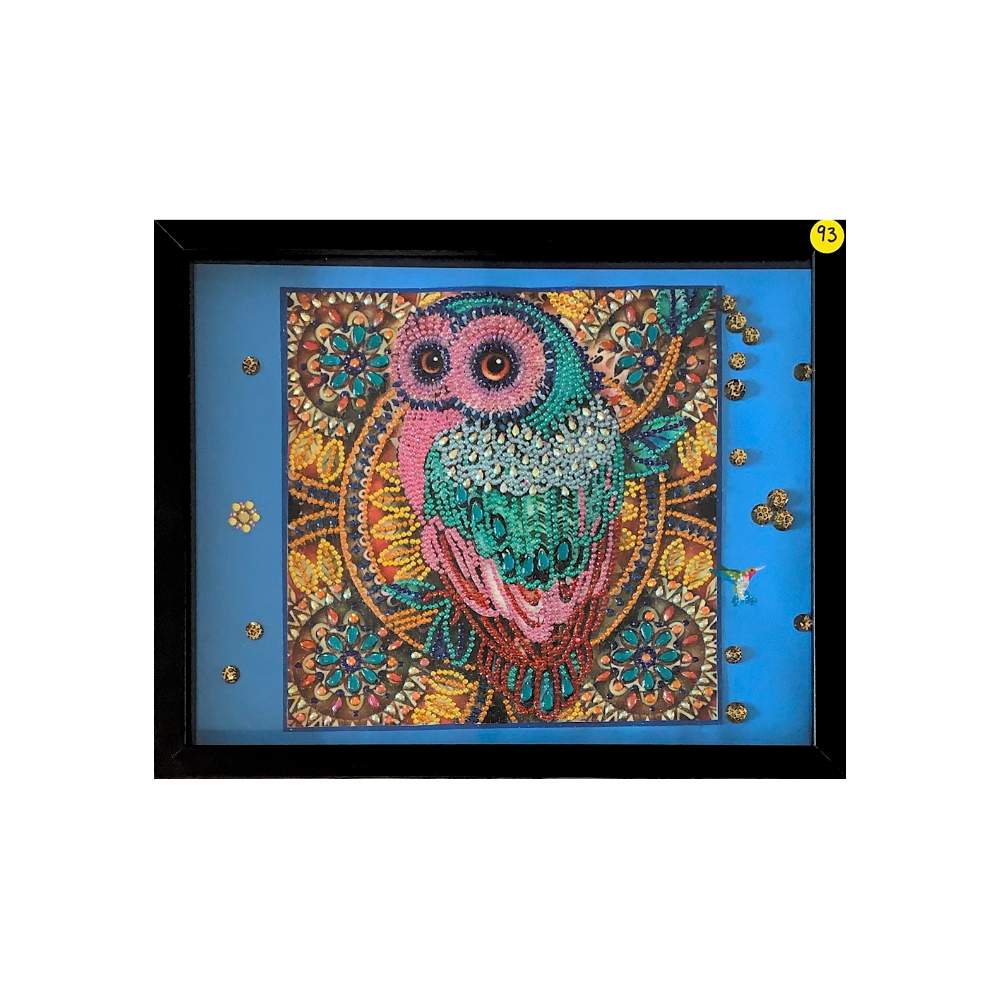 "12"" x 15"" Framed Colorful Owl Diamond Painting"