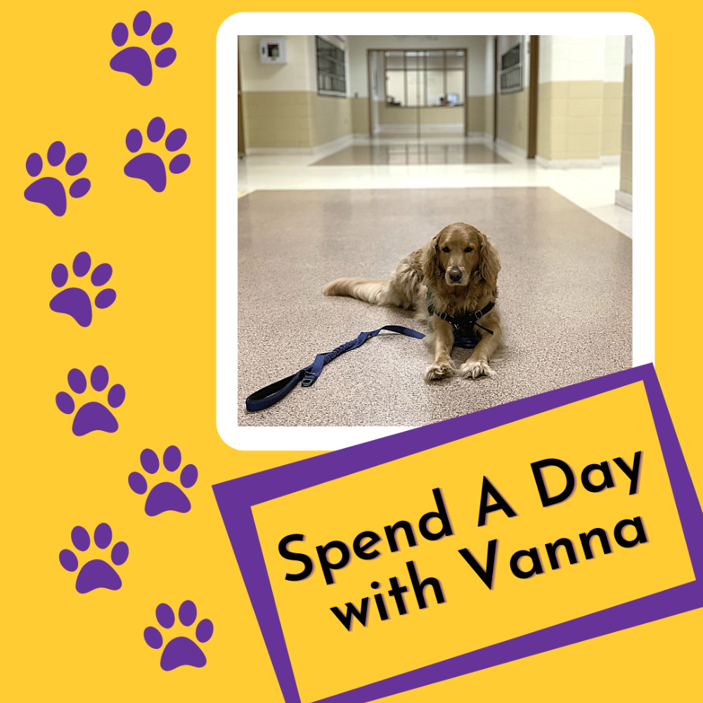 Spend a Day with Vanna!