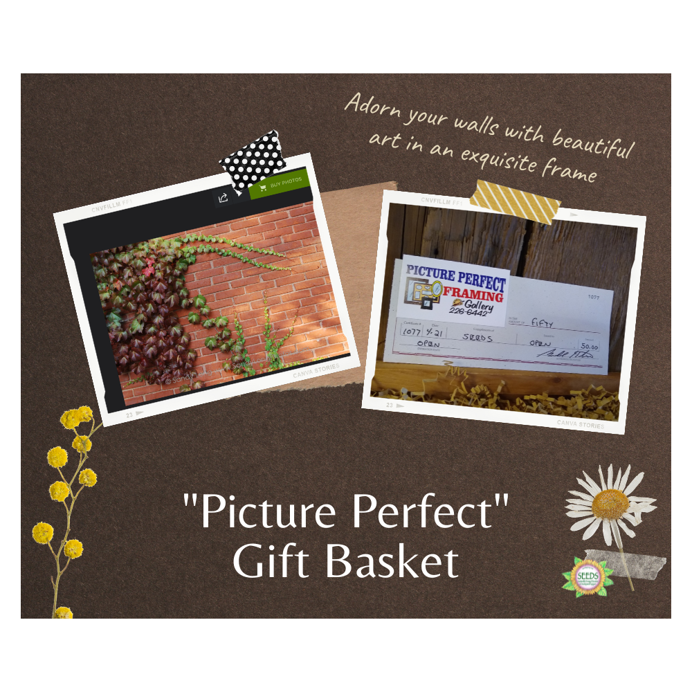 """""""Picture Perfect"""" Gift Basket - Your Choice of Any Photo by Sandy Long + $50 Gift Card for a Frame from Picture Perfect"""