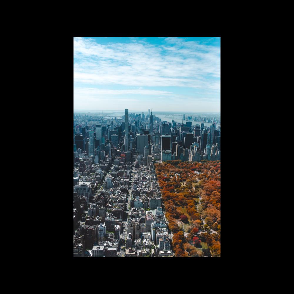 Week in New York City