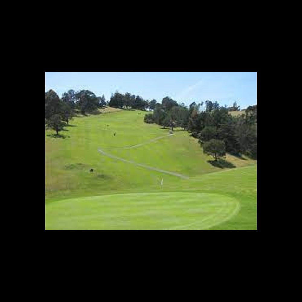 Lake Chabot Golf foursome