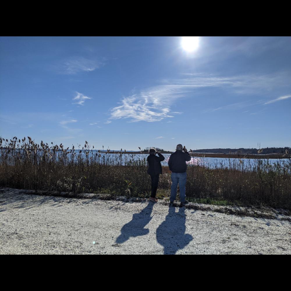 Guided Bird Walk with Nicole Kirkos