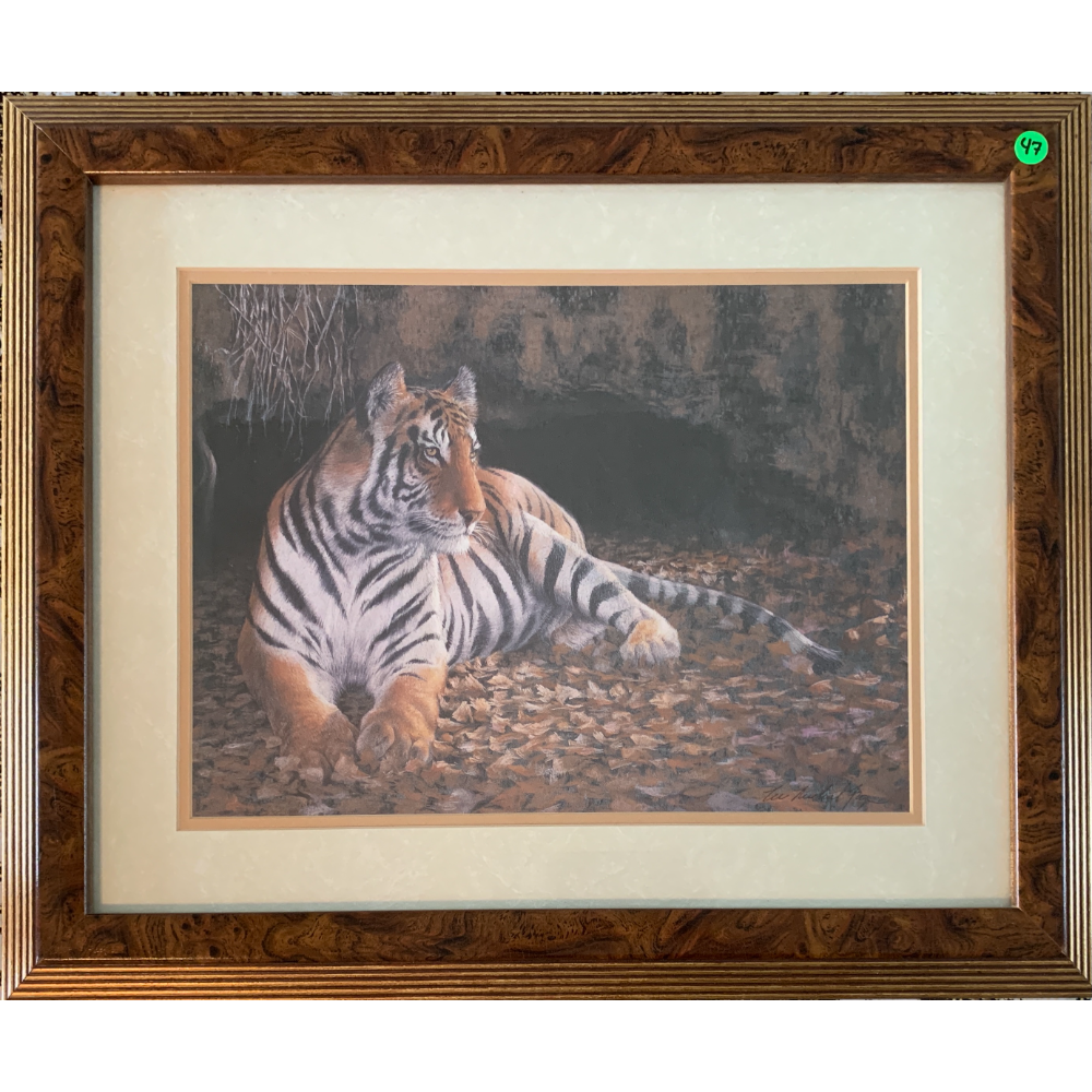 """20"""" x 24"""" Framed and Matted Tiger Portrait"""