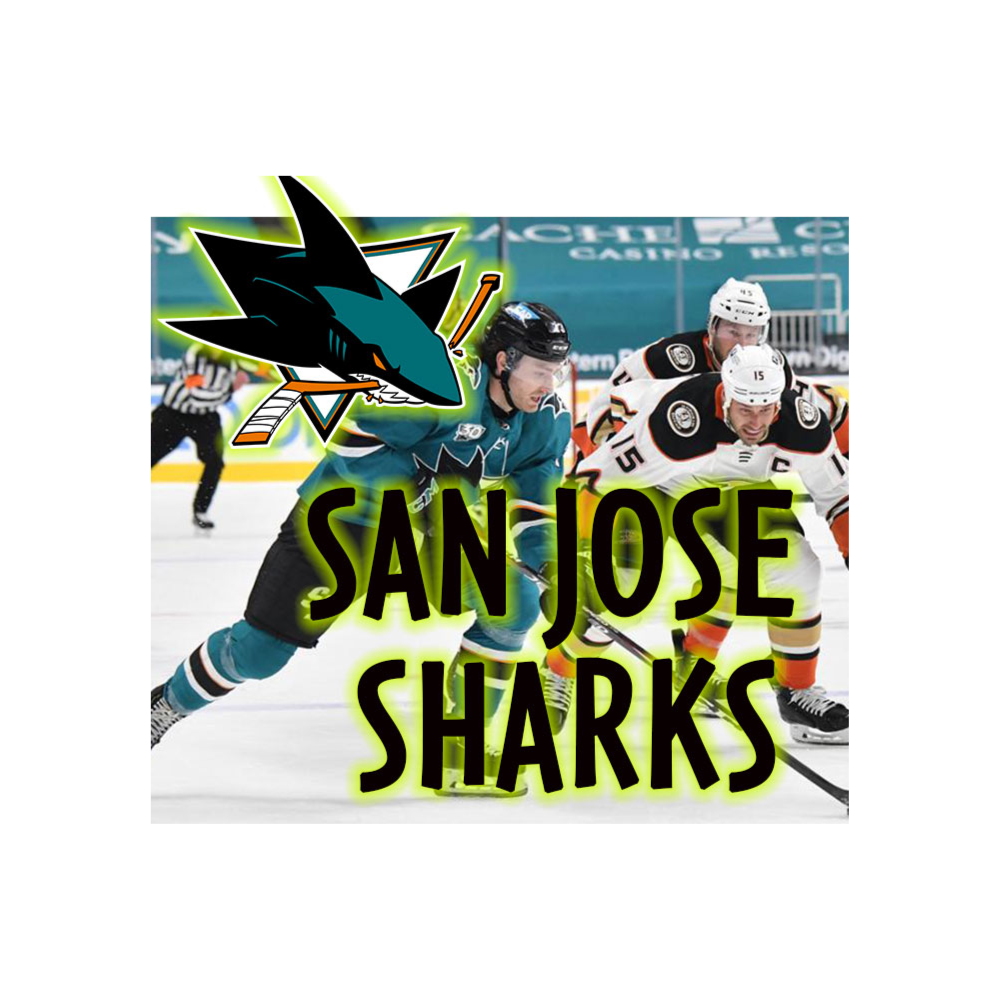 Two San Jose Sharks CLUB LEVEL Tickets