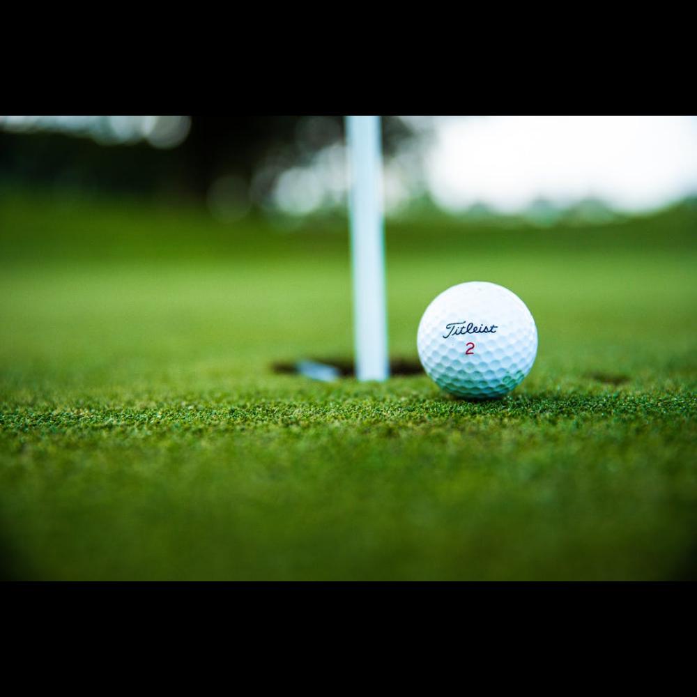 Follow Thru! Golf for Four